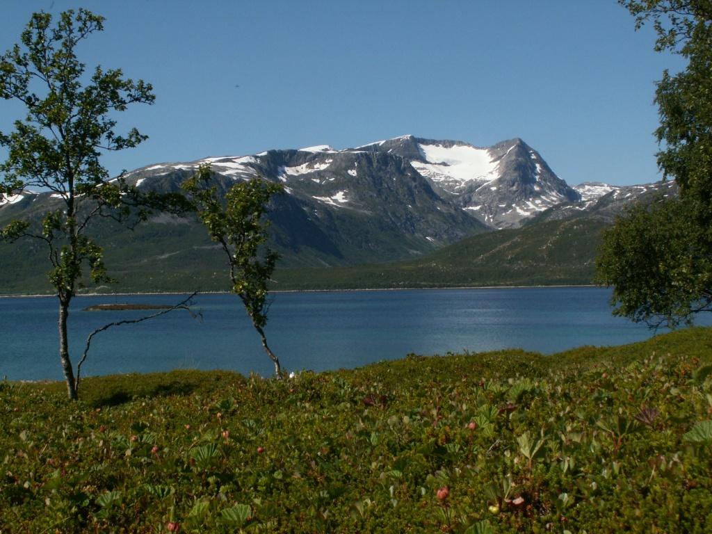 Ausblick vom Schlafplatz auf der Insel Nipøya