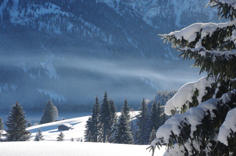 Traumlandschaft im Winter mit Hütten Fichte und Nebel in den Alpen