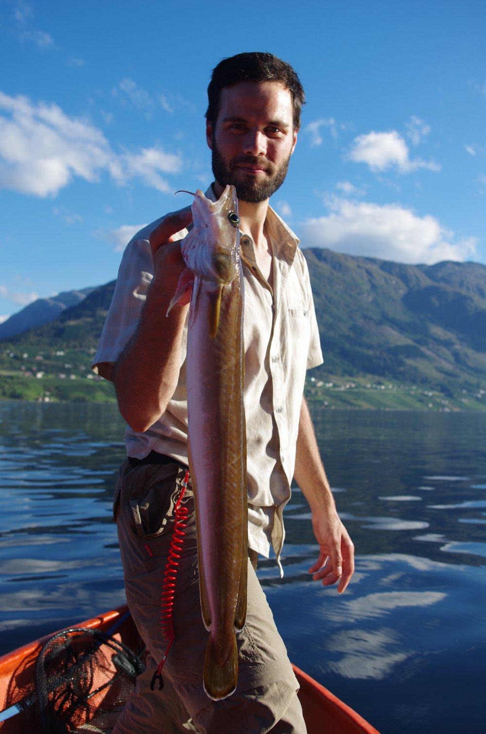 Fang eine Leng am Hardangerfjord